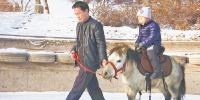 乌鲁木齐植物园冰雪大世界迎客 - 市政府