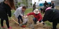 """乌鲁木齐:""""绿园工程""""让民族团结花儿大院添绿意(图) - 人民网"""