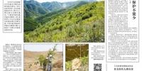 野骆驼产仔期新疆罗布泊严禁旅游探险 - 人民网