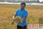 image.png - 中国新疆网