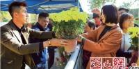 乌鲁木齐市植物园10万盆菊花开始免费赠送 - 市政府