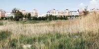 【城市一角看变化】昔日荒草地,今朝成公园 - 市政府